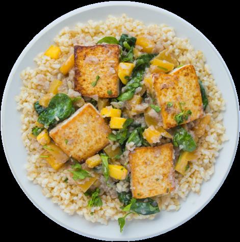 Medium vegan mangocurry dish
